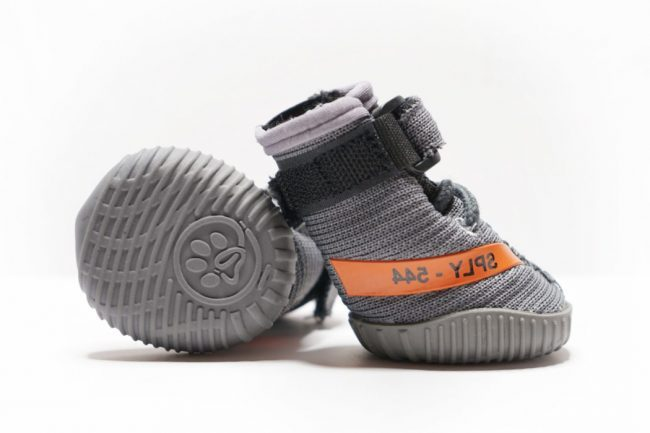 """TAKE A LOOK AT THESE FRESH PAWZ BELUGA 544 """"YEEZY SNEAKERS"""" FOR DOGS"""